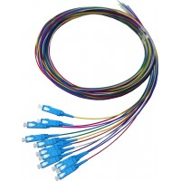 ProLink Package 12 Core Pigtail SC SM  PVC